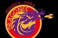 Academia de Artes Marciales Dragones de Hierro